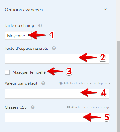 Options avancées wpforms